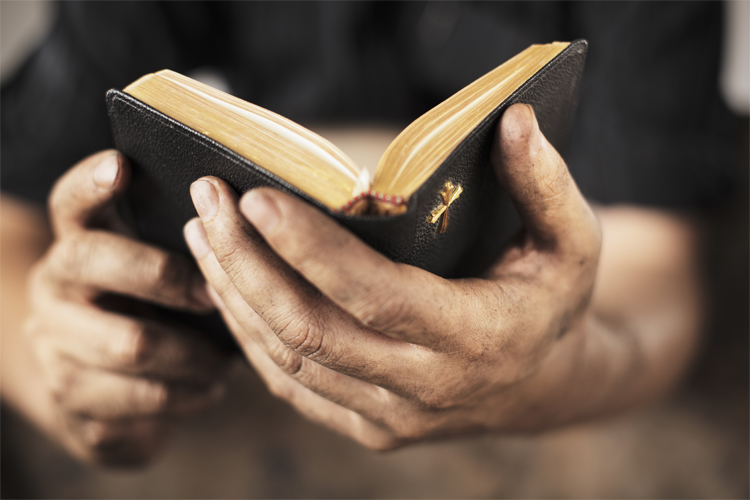 bible in hands reading